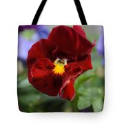 Viola Tricolor Heartsease Tote Bag
