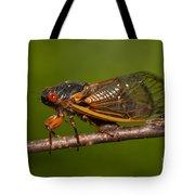 17-year Periodical Cicada I Tote Bag