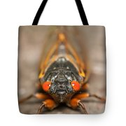 17-year Periodical Cicada IIi Tote Bag
