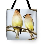 Birds Of The World Tote Bag
