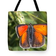 18 Balkan Copper Butterfly Tote Bag