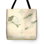 1853 Us Coast Survey Chart Or Map Of St Georges Sound Florida Tote Bag