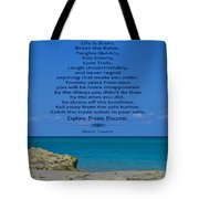 186- Mark Twain Tote Bag