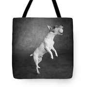 Portrait Of A Jack Russell Terrier Dog Tote Bag