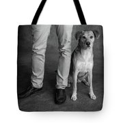 Portrait Of Red Bone Coon Mix Dog Tote Bag