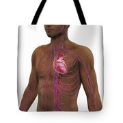 The Cardiovascular System Tote Bag