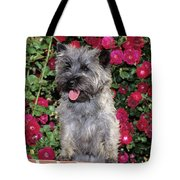 1990s Cairn Terrier Dog Standing Tote Bag