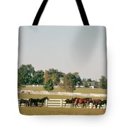 1990s Small Group Of Horses Tote Bag