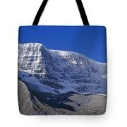 1m3732-h-snow Dome Tote Bag