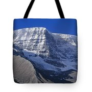 1m3732-v-snow Dome  Tote Bag