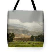 1st Day Of Rain Great Colorado Flood Tote Bag