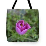 1st Spring Tote Bag