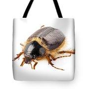 Cockchafer Or June Beetle  Tote Bag