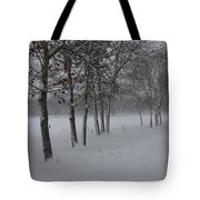 2 2014 Winter Of The Snow Tote Bag