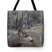 4x4 Mule Deer Buck Tote Bag
