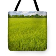 A Field Of Green Wheat Under A Cloudy Sky Tote Bag