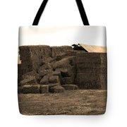 A Needle In A Haystack Tote Bag