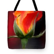 A Single Red Rose Tote Bag