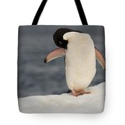 Adelie Penguin Tote Bag