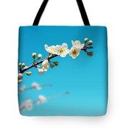 Almond Branch Tote Bag