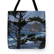 Along The Oregon Coast Tote Bag