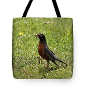 American Robin Gathering Worms Tote Bag