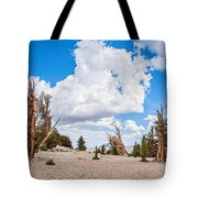 Ancient Panorama - Bristlecone Pine Forest Tote Bag