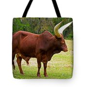 Ankole-watusi Cattle Tote Bag