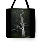 Anthropomorphic Tree Tote Bag