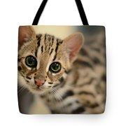Asian Leopard Cub Tote Bag
