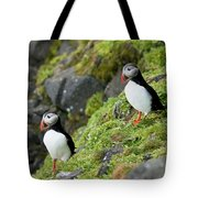 Atlantic Puffin, Fratercula Arctica Tote Bag