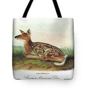 Audubon Deer Tote Bag