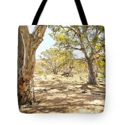Australian Outback Oasis Tote Bag
