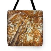 Autumn Aspens Tote Bag by Priska Wettstein