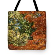 autumn colours in Bavaria Tote Bag