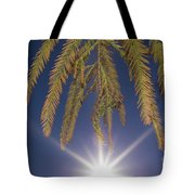 Autumn Coniferous Tote Bag