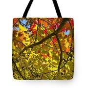 Autumn Maple Leaves Tote Bag