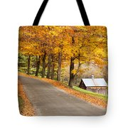 Autumn Road Tote Bag by Brian Jannsen