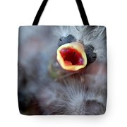 Baby Bird Tote Bag by Henrik Lehnerer