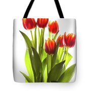 Backlit Tulip Flowers Against White Tote Bag