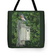 Backyard Bluebird 2 Tote Bag