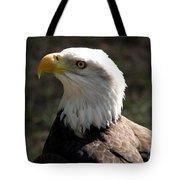 Bald Eagle Portrait Tote Bag