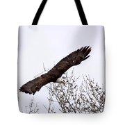 Bald Eagle Soaring Tote Bag