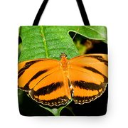 Banded Orange Butterfly Tote Bag