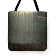 Beams Of Sunlight Shine Over Old Growth Tote Bag