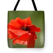 Beautiful Poppies 3 Tote Bag