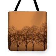 Beautiful Trees In The Fall Tote Bag