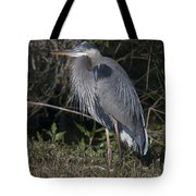 Birds Of The Lowcountry Tote Bag