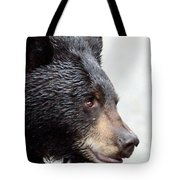 Black Bear Tote Bag