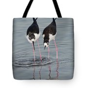Black-necked Stilt Tote Bag